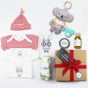 'Hello World' Baby Hamper
